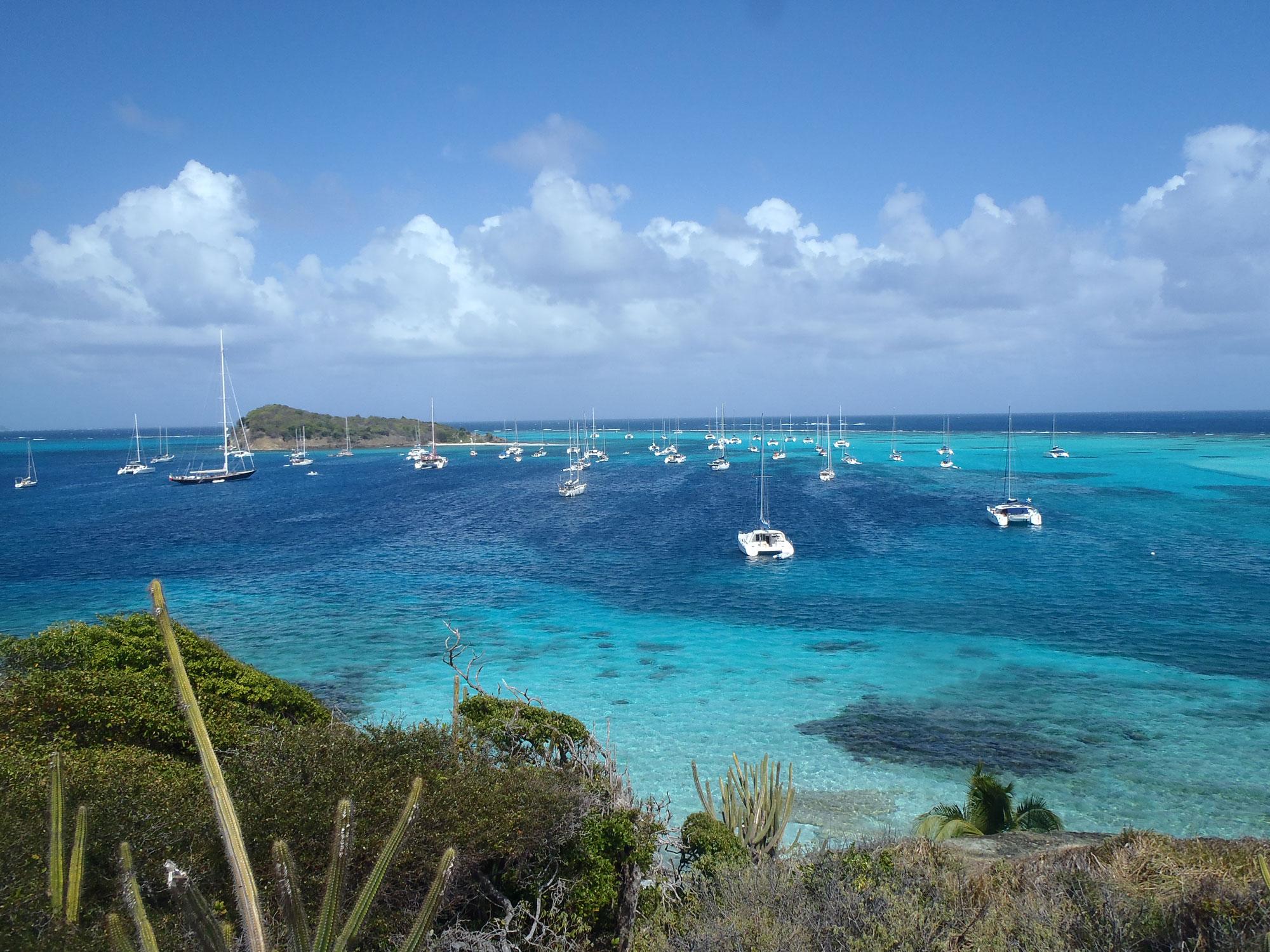 Partez pour une croisière voile et plongée en catamaran avec skipper au coeur des Grenadines et découvrez la superbe île des Tobago Cays !