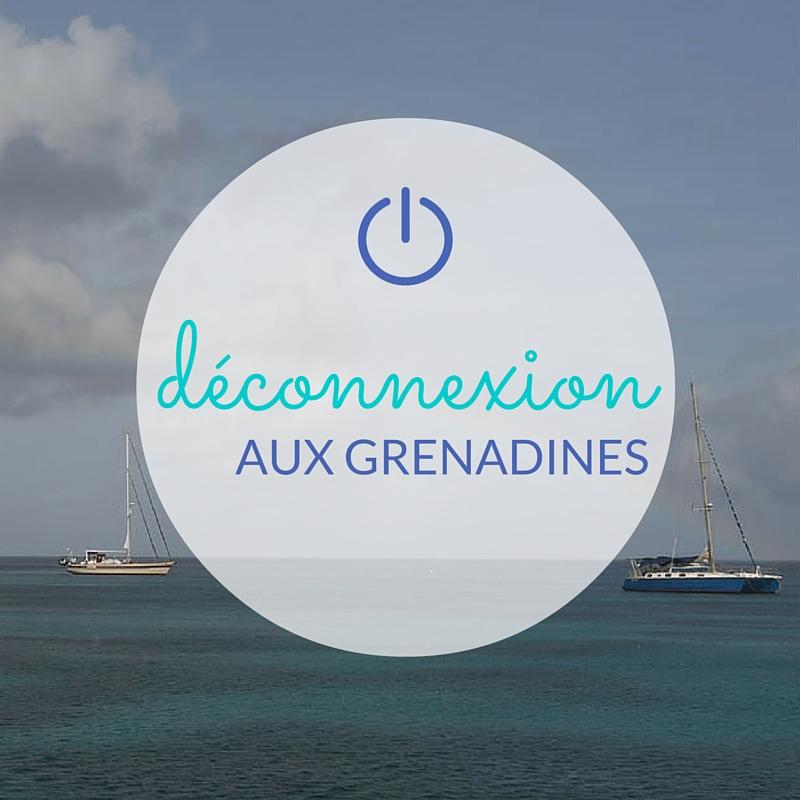 Chatham Bay, aux Grenadines, escale favorite du skipper pro Alain pour déconnecter lors de vacances en voilier