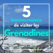 Les 5 bonnes raisons de visiter les Grenadines en voilier