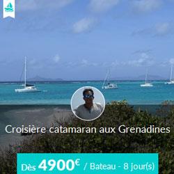 Miniature de l'offre de croisière Skippair avec Alain aux Grenadines en catamaran